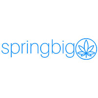 spring big