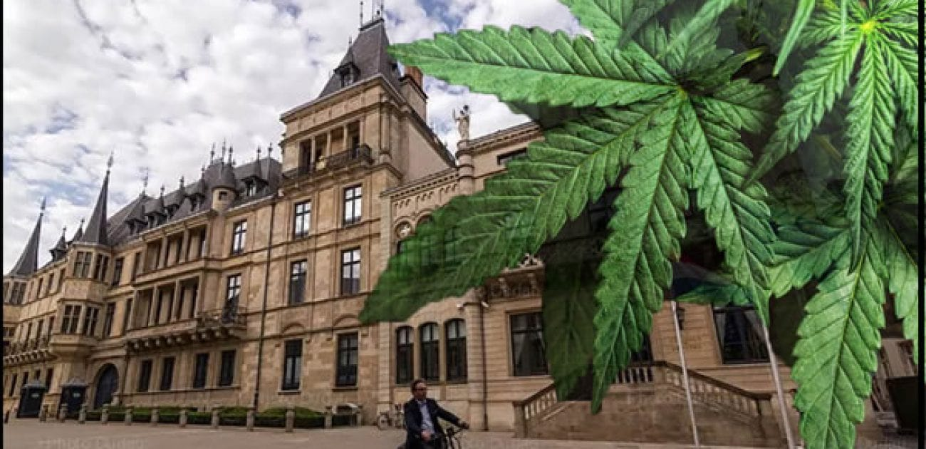 luxembourg-canna-2020-1300x630-min